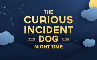 Unravel the Mystery in The Curious Incident of the Dog in the Night-Time!