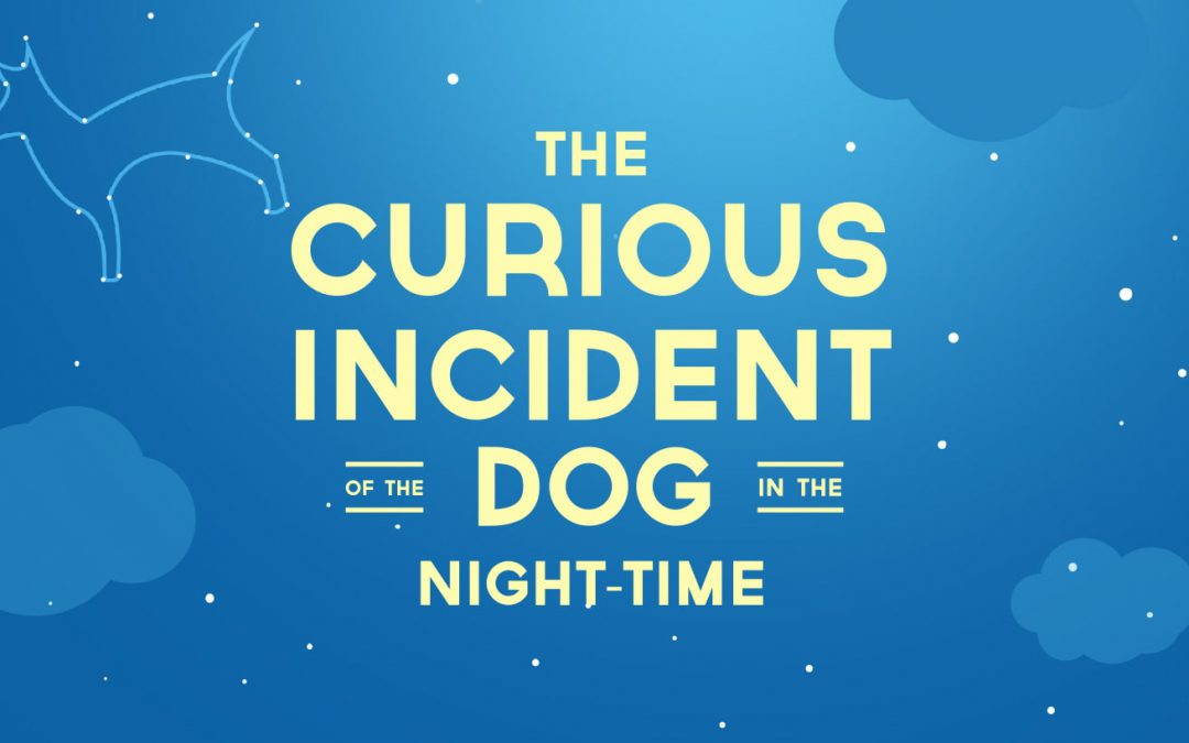 EPAC Presents The International Hit The Curious Incident Of The Dog In The Night-time!